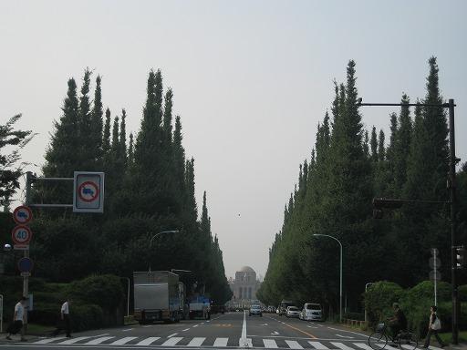 20080906_icho4_s.jpg