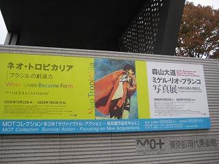 ネオ・トロピカリア@東京都現代美術館