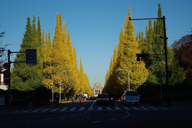 20081201_kaigakan2_s.jpg
