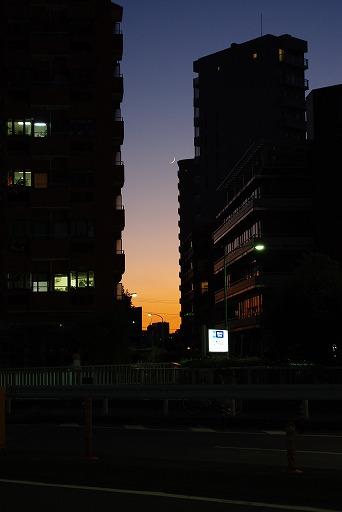20081202_k200d3_s.jpg