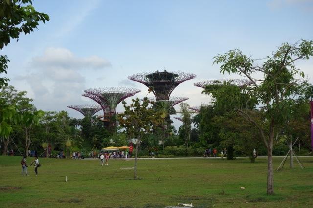 [シンガポール] 近未来的な植物園ガーデン・バイ・ザ・ベイ
