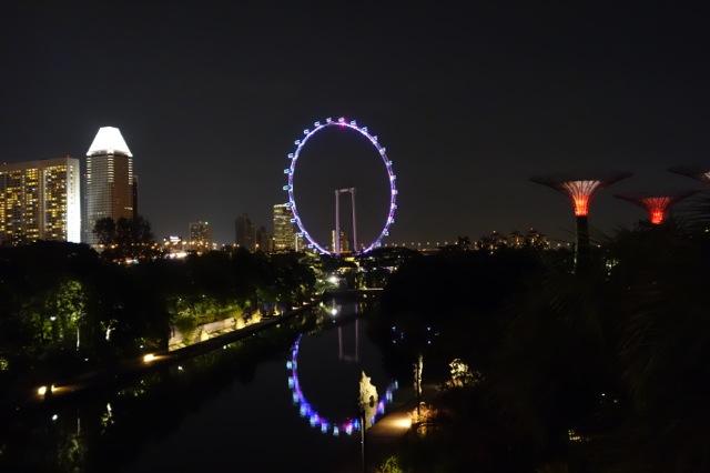 夜のシンガポールフライヤー
