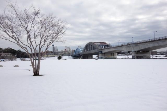 2014年2月 雪の多摩川