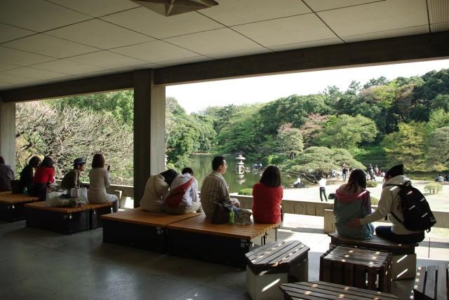 新宿御苑_日本庭園