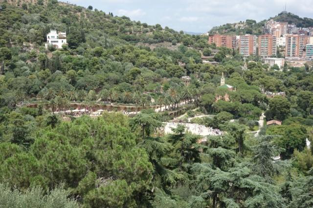 グエル公園周辺の木々