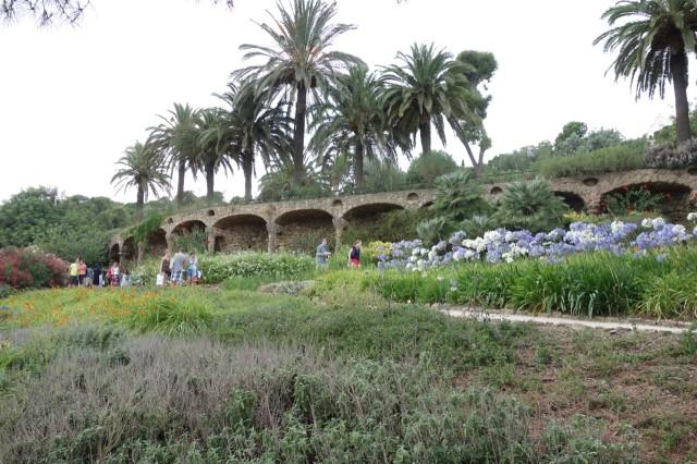 グエル公園の花・植物