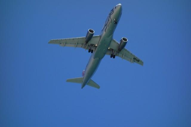 上空を飛行機が通過