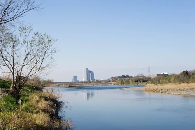 冬の多摩川(二子玉川方面)